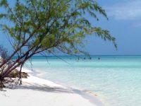 Playa Coco  - Playa Cayo Santa María  - Brisas del Caribe