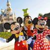 Disney's All Star Resort + Royal Palm Sputh Beach Miami