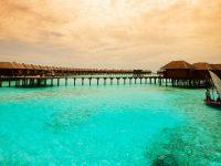 Aliya Sirigiya Resort + Jetwing Lagoon Hotel + Olhuveli + Hotel Hyatt Regency Dubai Creek Height