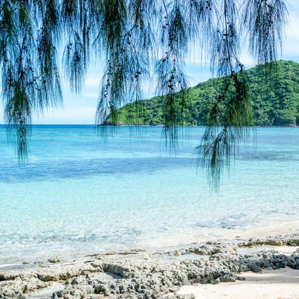 Matamanoa Island Resort  + Sofitel Fiji Resort & Spa